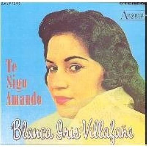 Te Sigo Amando by Blanca Iris Villafane (2008-09-15)