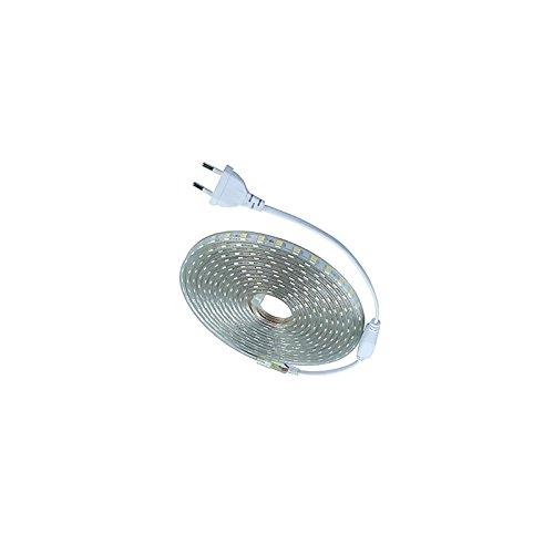 Cinta de luces led, blanco cálido, 220V, venta por metros, iluminación interior/exterior
