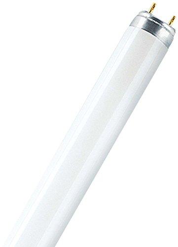 osram-biolux-t8-lampara-fluorescente-g13l-36-w-965