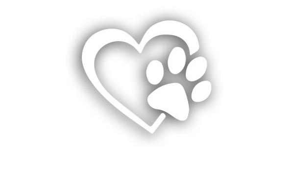 Aufkleber Pfote Mit Herz Hund Katze Tiere Tierfreunde Sticker Ca 12x11 Cm Schwarz Auto