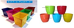 Malhotra Plastic 110022 Plastic Gift Pot Set (Multicolored, 8-Pieces) & Malhotra Plastic Cool Pot (13cm, Pack of 5, Multicolour)