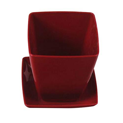 ToDIDAF, Mini vasetto da Fiori in Ceramica, Quadrato, in plastica, per Contenere Piante grasse, Erbe, Piante, Giardino, casa, Ufficio, Nursery