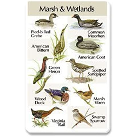 Identiflyer SongCard - Birds of the Marsh and Wetlands by Bird's