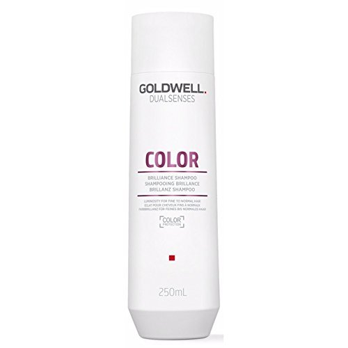 Dualsenses Color Shampoo By Goldwell for Unisex Shampoo, 10.1 Ounce by Goldwell