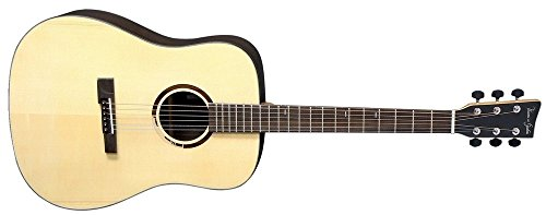 VGS R-10 Rose Westerngitarre