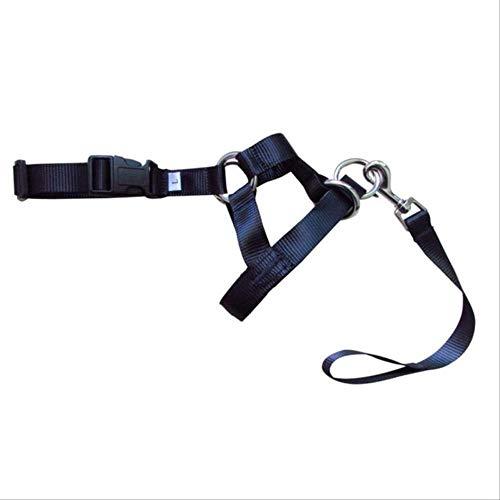 MHSM Hundeleine Nylon Hunde Kopf Kragen Hund Training Neckholder Blau Rot Schwarz Farben S Schwarz -