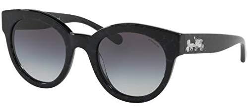 Sonnenbrillen Coach HC 8265 BLACK BLUE GLITTER/BLUE SHADED Damenbrillen
