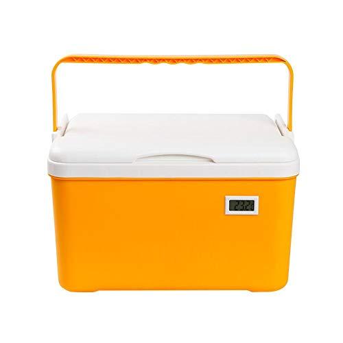 haodene 6L Elektrische Kühlbox mit Griff Mobiler Große Kühlschrank Kühler und Wärmer, Temperatur Anzeige, tragbare, Konservierung der Isolierung, für Zuhause, Auto und Camping, Reise