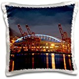 seattle-wa-seattle-qwest-field-and-elliott-16x16-inch-pillow-case