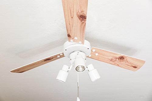 Deckenventilator mit Beleuchtung und Zugschalter Cyrus 107 cm, Gehäuse Weiß, Wendeflügel in Weiß und Kiefer (Deckenventilator Mit Licht Weiß)