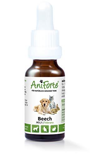 AniForte® Bachblüten 20 ml Beech - Intoleranz- Naturprodukt für Tiere