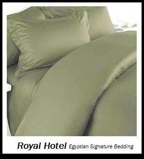 Duvet-set Salbei (Royal Hotel 's 8pc King Größe bed-in-a-bag massivem Salbei 600-thread-count sibirischen Gänsedaunen Alternative Tröster 100Prozent Baumwolle–inkl. Blatt und Bettbezug Sets)