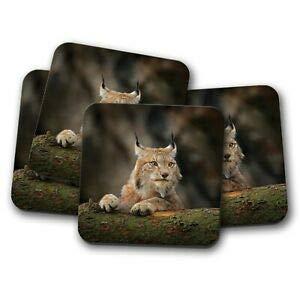 Worlddream Untersetzer-Set - Awesome Lynx - Katze Rocky Mountains Rockies America Geschenk Rocky Lynx