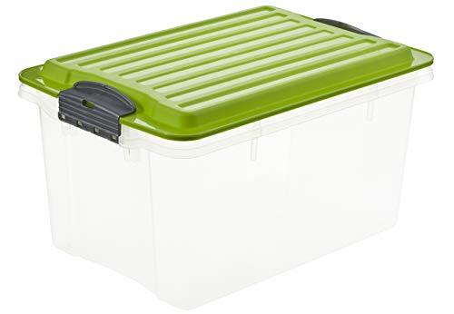 Rotho Compact Aufbewahrungskiste 4.5 l mit Deckel, Kunststoff (PP), grün/transparent, 4.5 Liter / A5 (27 x 18,5 x 15 cm)