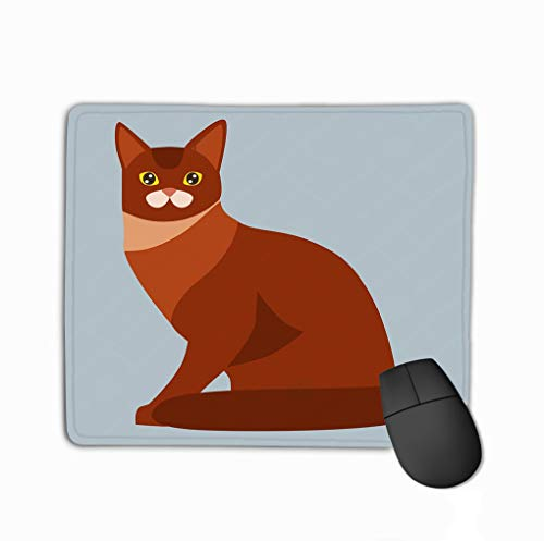 Mousepad Non Slip Rubber Personalized Unique Gaming Mouse Pad 11.81 X 9.84 Inch cat Breed Abyssinian Cute pet Portrait Fluffy red Adorable Cartoon Animal Pretty Fun Play Feline Sitting Mammal Kitty -