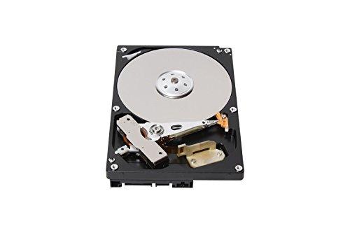 Toshiba DT01ACA100 interne Festplatte 1TB (8,9 cm (3,5 Zoll), 7200rpm, 32MB Cache, SATA III)