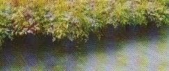 Premium Garten Bodenbedeckung Mulch Weed Stoff 8m x 1m