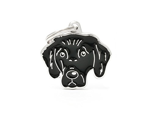 myfamily-tag-flat-coated-retriever-plate-dogs-free-engraving-custom-cats