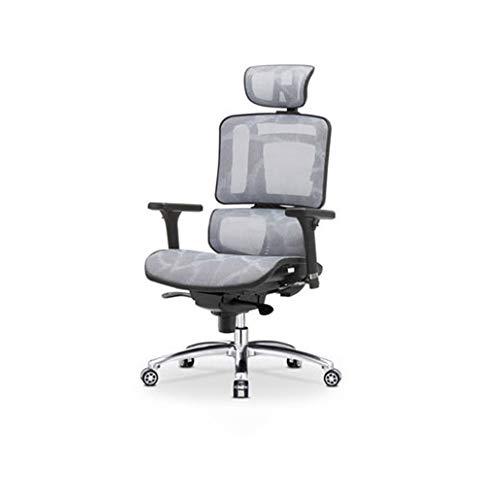 LBSX Gaming Stuhl, High Gaming Office High Back Computer Ledersessel Racing Executive Ergonomisch Verstellbarer drehbarer Arbeitsstuhl mit Kopfstütze und Lordosenstütze, Schwarz (Color : Gray)