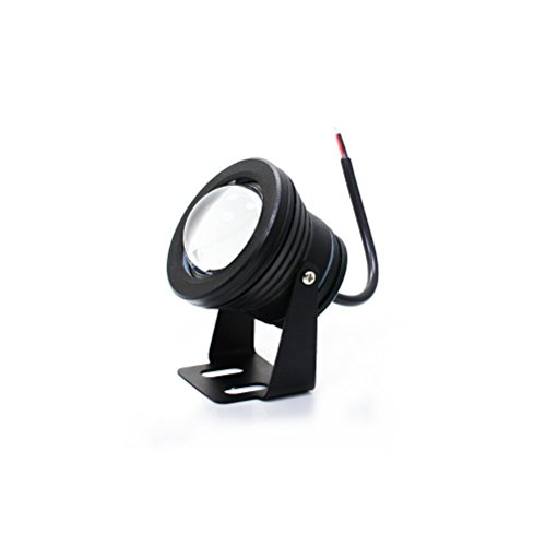 IPUIS Universal Ultra - Brillante Lumineux 10W Spot LED Lampe Etanche Extérieur pour Voiture/ Moto Utiliser Comme Feux de Recul, Feu Anti-brouillard,Feux de Circulation, Feux Avant de La Barre, Lampes de Travail,etc - Lumière Blanche, Noir