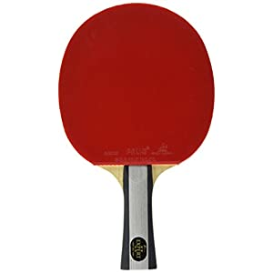 Palio] Expert 2 Tischtennisschläger mit Hülle