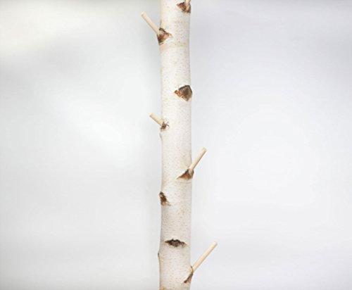Weiße Birkenstamm-Garderobe mit Stellfuß getrocknet - 3 Meter Länge