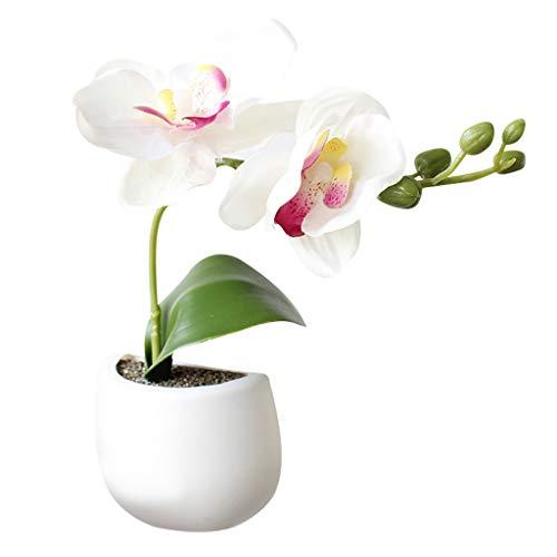 Bumen kunstblumen Sukkulenten 1 Stück tischdeko Hochzeit Dekoration frühlingsblumen zimmerpflanzen Valentinstag deko Ideen kunstblumen Blumen verschicken Weihnachten deko Party deko kunstblumen