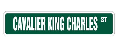 Cavalier King Charles Street Sign Dog Wasserspeier Pet Lover Animal 61cm Grün Medium Grün
