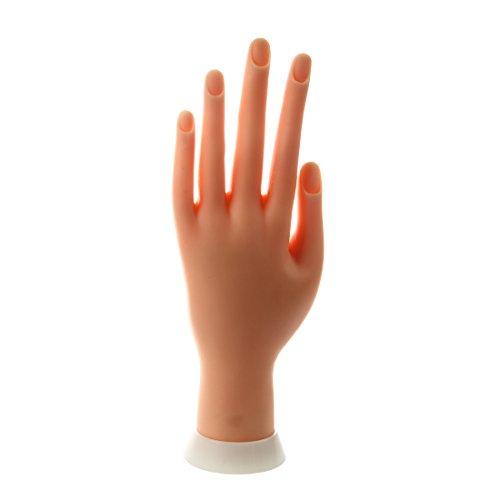SODIAL (R) de unas de arte practica modelo ejercicio manos dedo pantalla ejercicio Mano Izquierda
