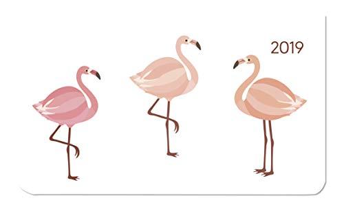 Ladytimer Pad Flamingos 2019 - Taschenplaner / Taschenkalender quer (16 x 9) - Weekly - 128 Seiten -...