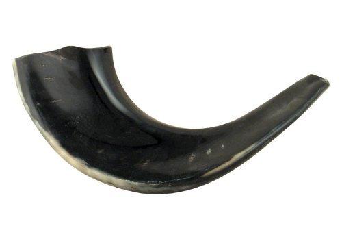 aJudaica 11'12' Kosher negro Rams Horn pulido Shofar fabricado en Israel
