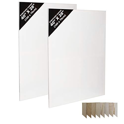 Kurtzy 2er-SetLeinwände - Kunst Leinwand Set zum Malen - Große Leinwände mit Holzkeilen - Leere Leinwände zum Malen - Bespannte Keilrahmen Leinwände (100 cm x 70cm) - Malkarton