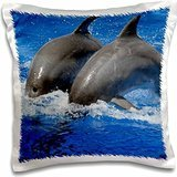 Kike Calvo Dolphins - Two dolphins diving together at Oceanographic Aquarium in Valencia, Spain - 16x16 inch Pillow Case