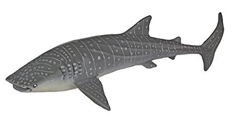 MB Whale Shark
