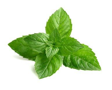 Aroma concentrato menta 10ml - big flavor