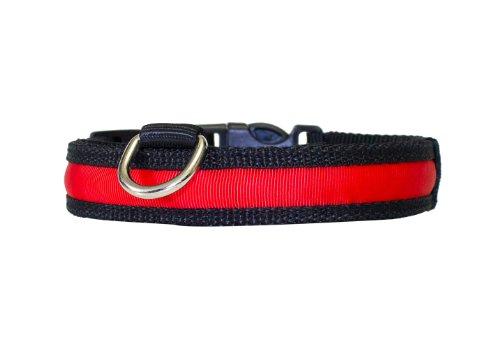 """Hunde Leuchthalsband LED Halsband Hundehalsband Hunde-Halsband """"Zandoo"""" Leuchthalsband inkl. Batterie für Hunde in der Farbe rot Größe M (36-56 cm) Haustiere Katzen NEU von der Marke PRECORN"""