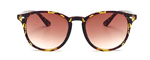 Hemio Herren Sonnenbrille Moda Rund Sonnenbrillen Bunt Outdoor-Brille Flieger Sonnenbrille Polarisiert Reise Fahren Sonnenbrille Steampunk
