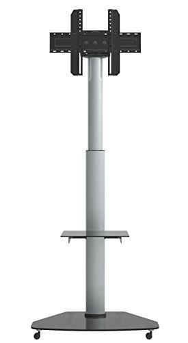 Dynamic Wave MoTV-700 LED LCD TV Ständer Plasma mobiler TV Standfuss höhenverstellbar TV Trolley bis 180cm (70 Zoll) Diagonale 1,2 bis 1,8m hoch rotierbar um 90 Grad auch 37 42 47 55 60 und 63 Zoll für Samsung Panasonic Philips Parkett Rollen