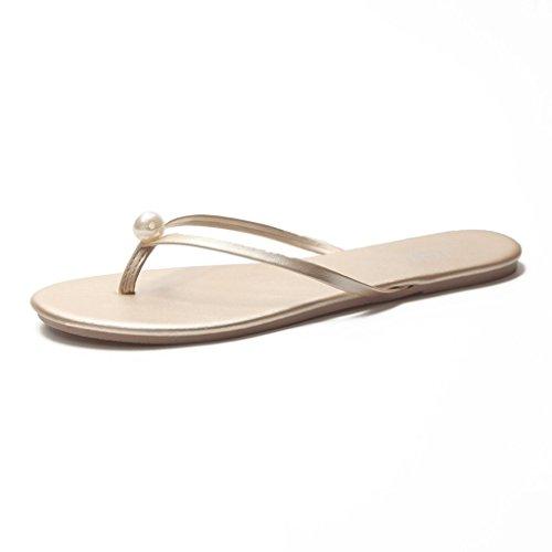 Chaussons Sandales Femme Été Fashion Amants Slip Slip Beach Tongs