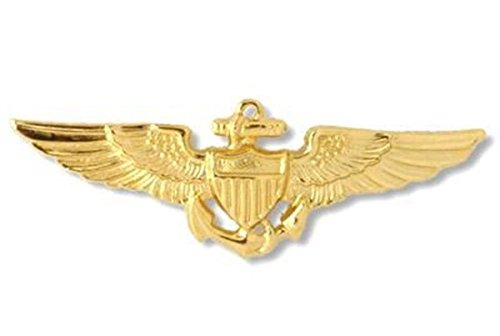Gold Aviator Pin Metall Badge für Pilot Crew Fluggesellschaft Air Fancy Kleid Zubehör (Pilot Fancy Dress Kostüm)