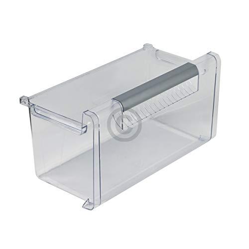 Schublade Kühlschrank KühlGefrierKombination 420x215x21mm Bosch Neff 00449014