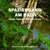 Spaziergang am Bach: Spezielle Entspannungsmusik