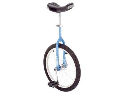 """Fishbone Einrad 20"""" matt-blau Luxus"""