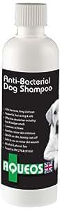 Aqueos Shampooing antibactérien et antifongique pour chien