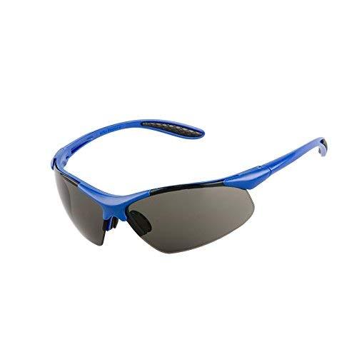 PRO FIT Viper Schutzbrille, getönt