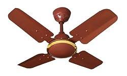 Amul Fans Cool King 24 High Speed Ceiling Fan Mat-Brown