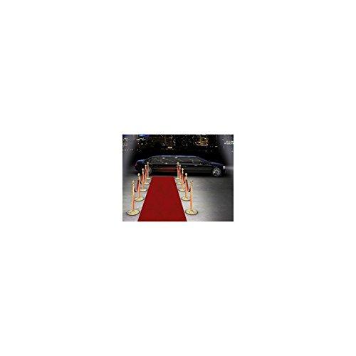 Celebridades alfombra roja (15m)