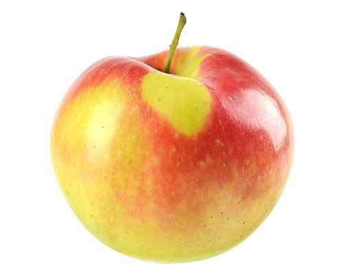 OBI Beliebtester Apfel im Erwerbsobstbau