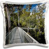paths-airwalk-paths-tahune-forest-tasmania-australia-16x16-inch-pillow-case