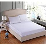 Trance Home Linen 100% Cotton 300 TC Plain Elasticated Fitted Bedsheet With Pillow Covers-White (Queen)